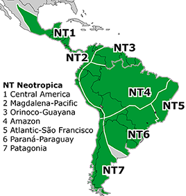 Neotropical Subregion