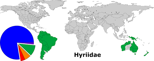 Global Distribution of the Hyriidae. The green wedge of the pie depicts the relative diversity of the family (71 of 842).