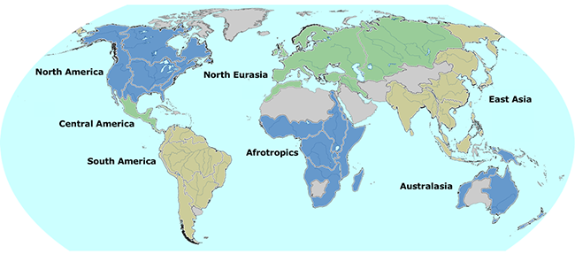 Freshwater Mussel Regions of the World