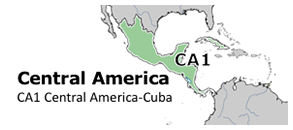 Central American Subregions