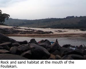 Rock and sand habitat at the mouth of the Foulakari.