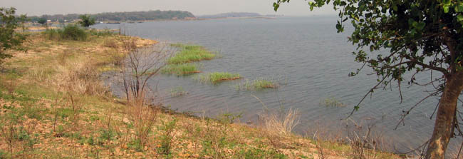 The Siansowa Peninsula on Lake Kariba. Not a good musseling site when we were there, with a very soft, mud-gravel substrate.