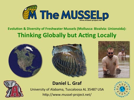 Evolution and diversity of freshwater mussels (Mollusca: Bivalvia: Unionoida): Thinking Globally but Acting Locally